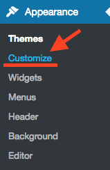 Click Customize on WordPress Dashboard