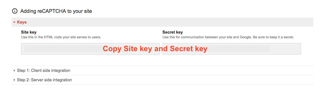 Copy Site key and Secret key